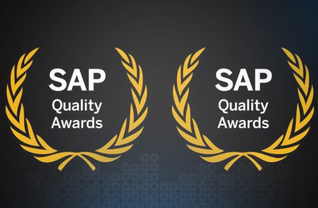 Gavdi wins SAP Quality Awards